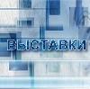Выставки в Ельцовке