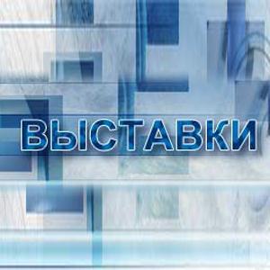 Выставки Ельцовки